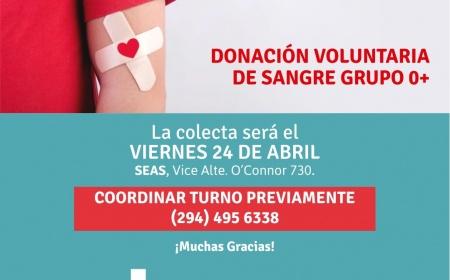Donación voluntaria de sangre Grupo 0+